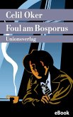 Foul am Bosporus (eBook, ePUB)