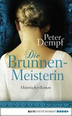 Die Brunnenmeisterin (eBook, ePUB)