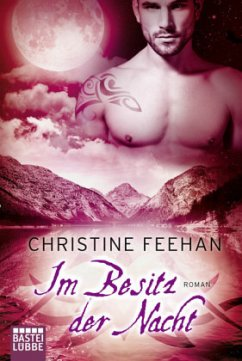 Im Besitz der Nacht / Dark Carpathians Bd.27 - Feehan, Christine
