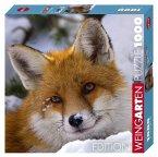 Fox (Puzzle)