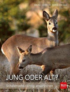 Jung oder alt? - Krewer, Bernd;Hespeler, Bruno