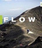 Flow (eBook, ePUB)