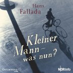 Kleiner Mann - was nun?, 1 Audio-CD