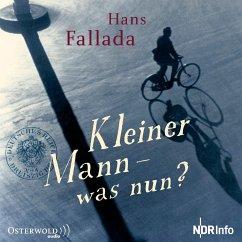 Kleiner Mann - was nun?, 1 Audio-CD - Fallada, Hans