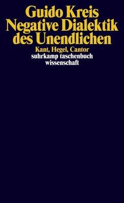 Negative Dialektik des Unendlichen (eBook, ePUB) - Kreis, Guido