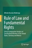 Rule of Law and Fundamental Rights (eBook, PDF)