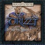 Im Zeichen des Panthers / Drizzt - Die Saga vom Dunkelelf Bd.4 (MP3-Download)