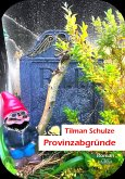 Provinzabgründe (eBook, ePUB)
