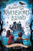Die verschwundenen Kinder / Die Geheimnisse von Ravenstorm Island Bd.1 (eBook, ePUB)