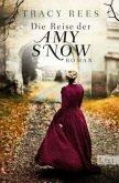 Die Reise der Amy Snow