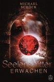 Erwachen / Seelensplitter Bd.1 (eBook, ePUB)