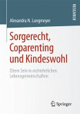 Sorgerecht, Coparenting und Kindeswohl (eBook, PDF)