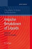 Impulse Breakdown of Liquids (eBook, PDF)