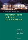 The Mathematics of the Bose Gas and its Condensation (eBook, PDF)