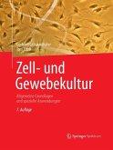 Zell- und Gewebekultur (eBook, PDF)