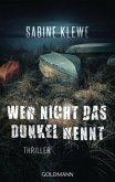 Wer nicht das Dunkel kennt / Louis & Salomon Bd.3