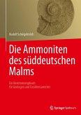 Die Ammoniten des süddeutschen Malms (eBook, PDF)