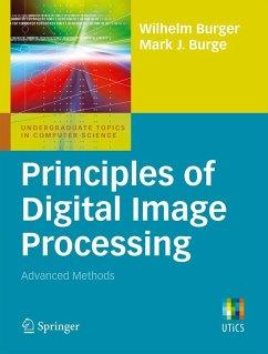 Principles of Digital Image Processing (eBook, PDF) - Burger, Wilhelm; Burge, Mark J.