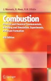 Combustion (eBook, PDF)