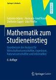 Mathematik zum Studieneinstieg (eBook, PDF)