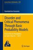 Disorder and Critical Phenomena Through Basic Probability Models (eBook, PDF)