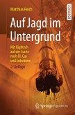 Auf Jagd im Untergrund (eBook, PDF)