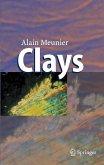 Clays (eBook, PDF)