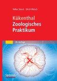 Kükenthal - Zoologisches Praktikum (eBook, PDF)