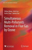 Simultaneous Multi-Pollutants Removal in Flue Gas by Ozone (eBook, PDF)