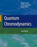 Quantum Chromodynamics (eBook, PDF)