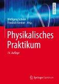Physikalisches Praktikum (eBook, PDF)