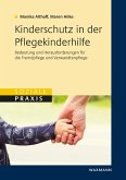 Kinderschutz in der Pflegekinderhilfe (eBook, PDF)