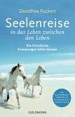 Seelenreise in das Leben zwischen den Leben (eBook, ePUB)