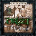 Der Hüter des Waldes / Drizzt - Die Saga vom Dunkelelf Bd.6 (MP3-Download)