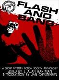 Flash and Bang (eBook, ePUB)
