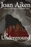 Is Underground (eBook, ePUB)