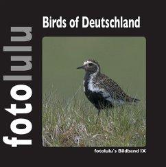Birds of Deutschland - fotolulu