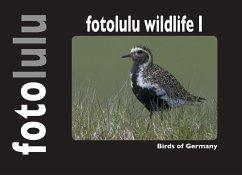 fotolulu wildlife I - fotolulu