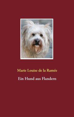 Ein Hund aus Flandern