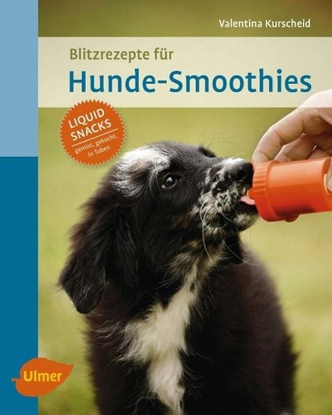 blitzrezepte f r hunde smoothies von valentina kurscheid buch b. Black Bedroom Furniture Sets. Home Design Ideas