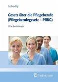 Gesetz über den Pflegeberuf (Pflegeberufsgesetz - PflBG)