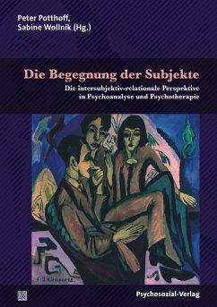 Die Begegnung der Subjekte (eBook, PDF)