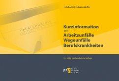 Kurzinformation über Arbeitsunfälle Wegeunfälle Berufskrankheiten - Braunsteffer, Heike