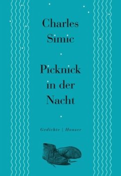 Picknick in der Nacht - Simic, Charles