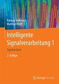 Intelligente Signalverarbeitung 1 (eBook, PDF)