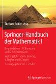 Springer-Handbuch der Mathematik I (eBook, PDF)