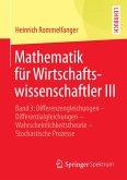 Mathematik für Wirtschaftswissenschaftler III (eBook, PDF)