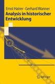 Analysis in historischer Entwicklung (eBook, PDF)