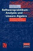 Softwarepraktikum - Analysis und Lineare Algebra (eBook, PDF)