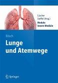 Lunge und Atemwege (eBook, PDF)